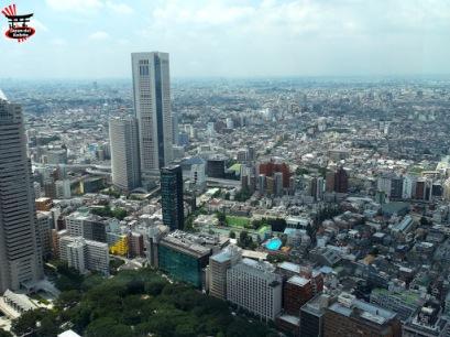 Observatoire du Tôkyô Metropolitan Government 東京都庁